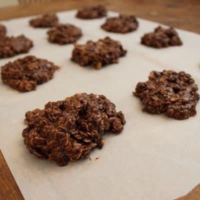 Fingerlickin' Good No Bake Lactation Cookies (Vegan and Gluten Free!)