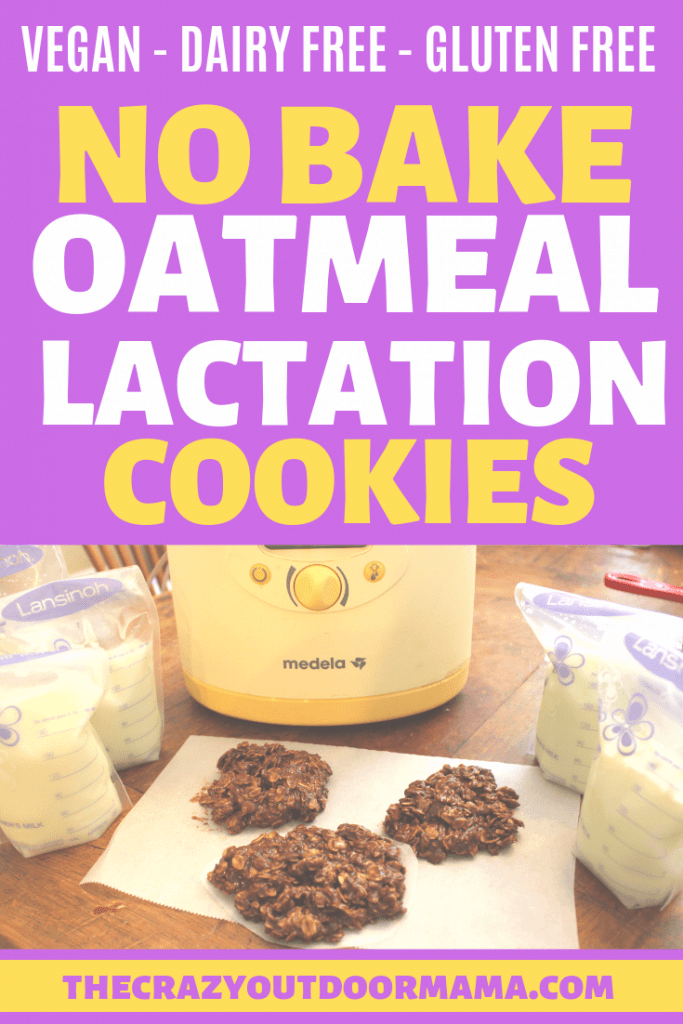 These easy, healthy no bake lactation cookies are just the thing you need to boost your milk supply! They are so easy to make, and are super moist! Best of all, they are dairy, egg and processed sugar free so you can increase your lactation the healthy way! #lactation #breastfeeding #breastmilk #newmom #thecrazyoutdoormama