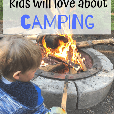 13 Best Camping Picture Books for Preschoolers that Will Get Them Excited for that Camp Trip!