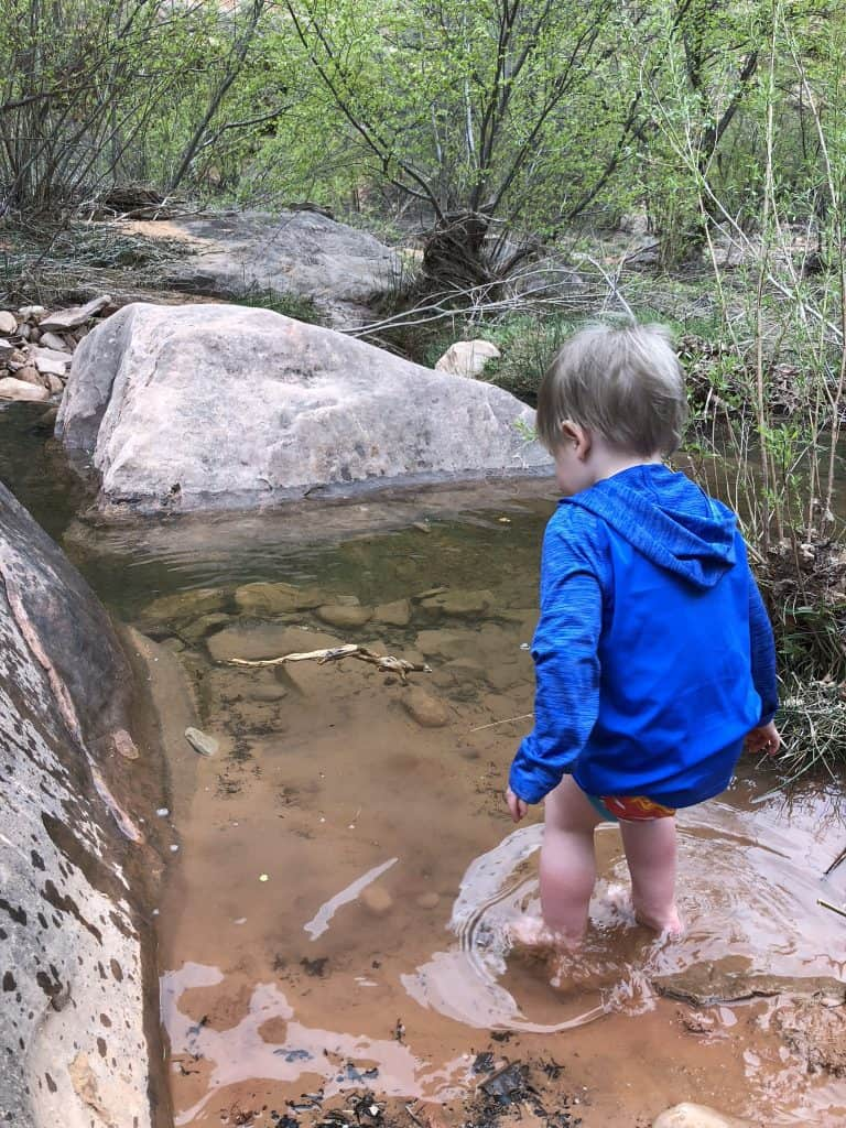Have fun when hiking with toddlers!