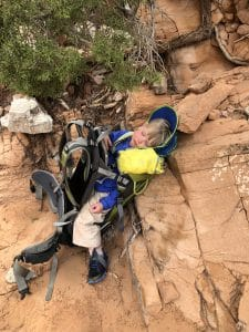 bring a carrier for your toddler when hiking