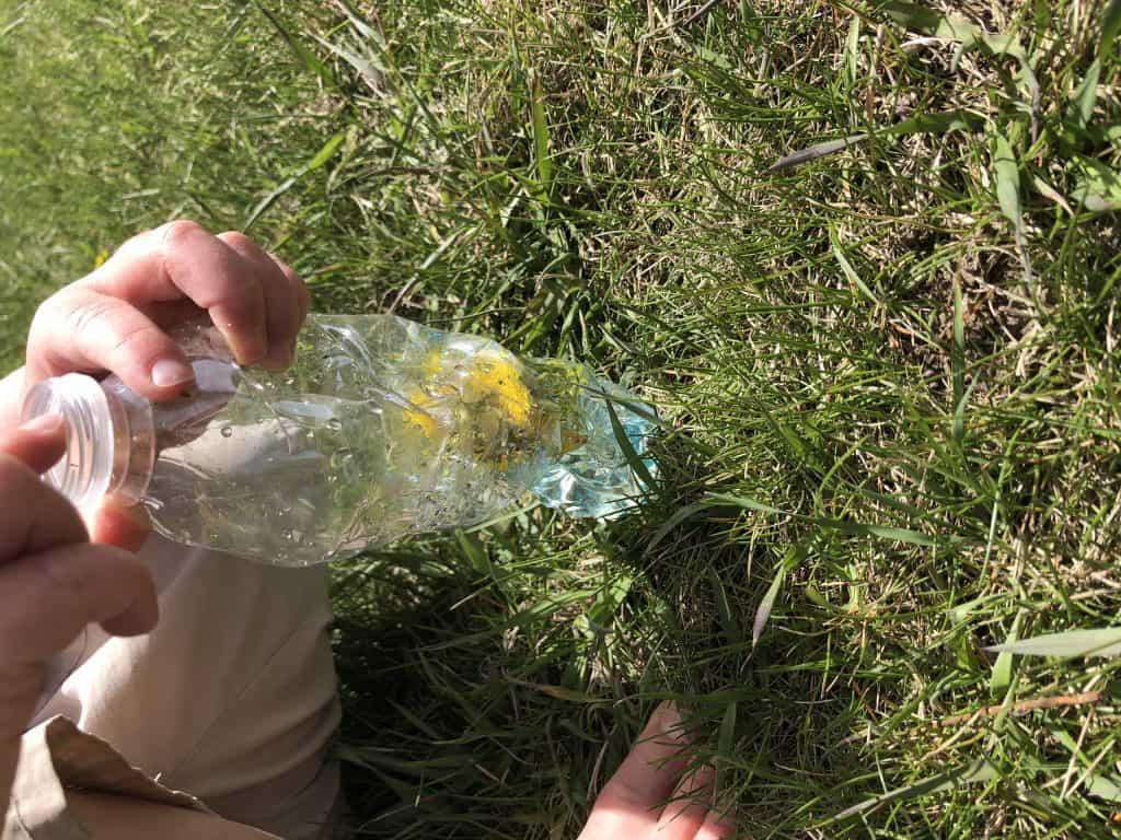 dandelion sensory bottle crafts with kids