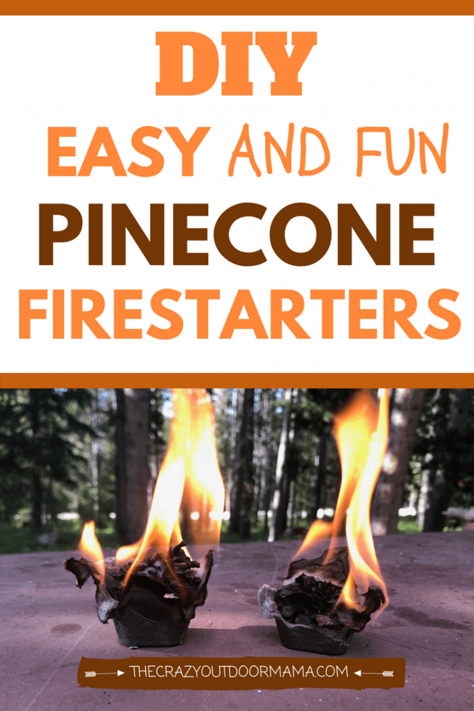 If you're going camping, make a campfire quick with these easy homemade pinecone firestarters! These DIY firestarters are easy and cheap to make, and use an egg carton, pinecones, and some wax!  Learn how to make these fun firestarters for use at camp or even your woodstove or fireplace!