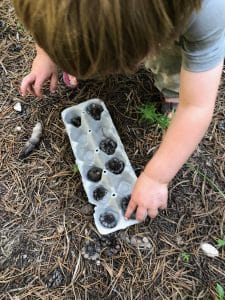 diy firestarter with egg carton and pinecone