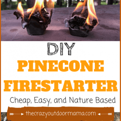 DIY Cheap, Long Burning Firestarter Using Pinecones!
