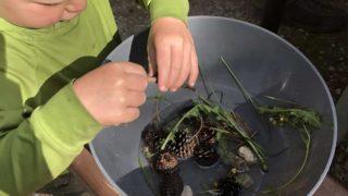 Sensory Soup - A Fun Kid's Camping Activity