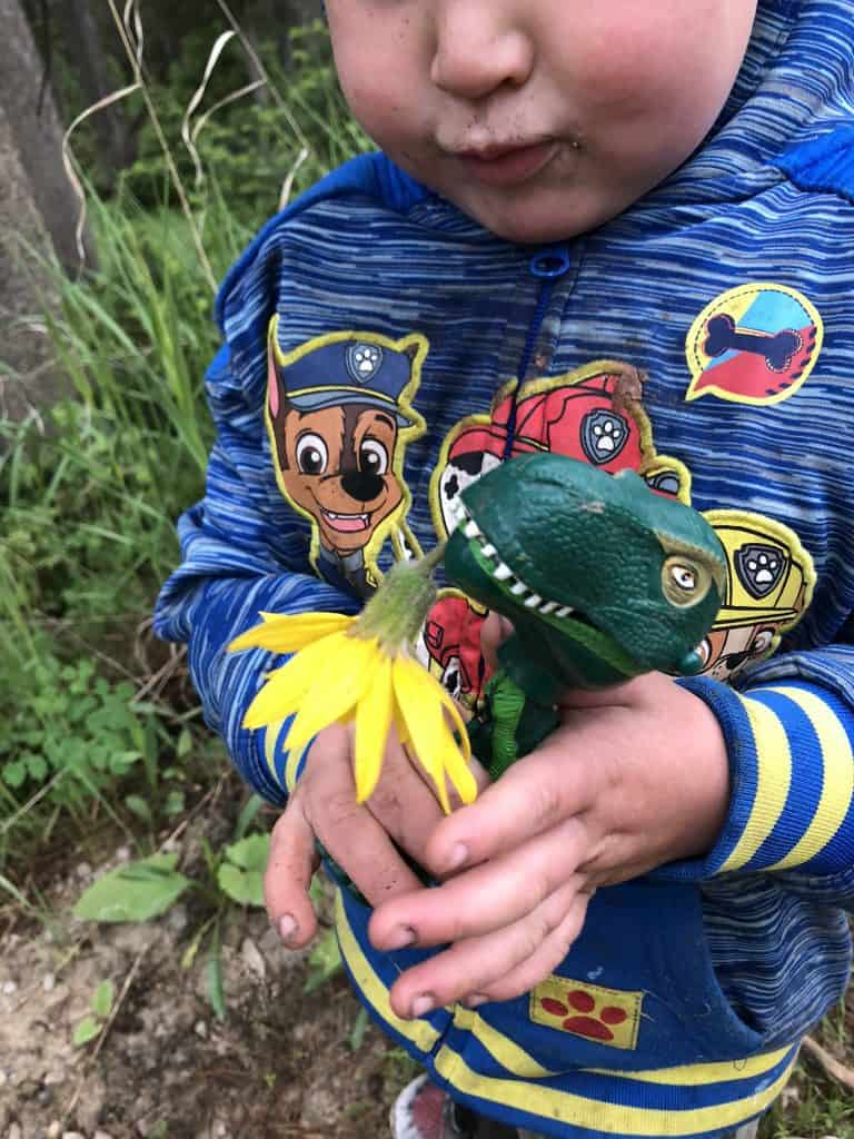 fun nature activity while camping with kids