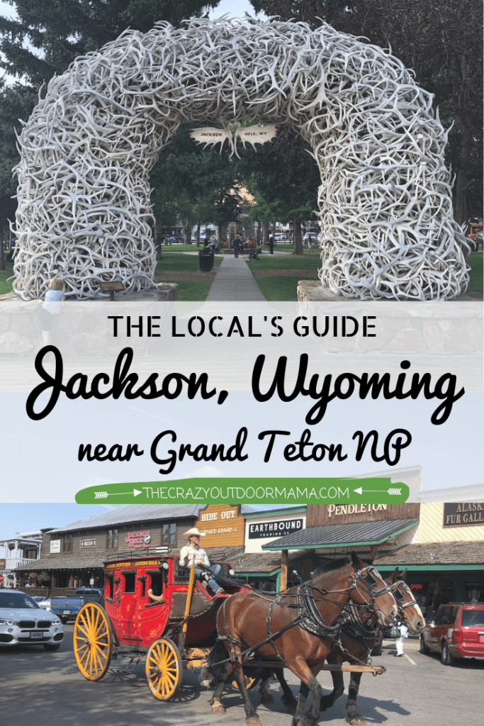 jackson wyoming information for families