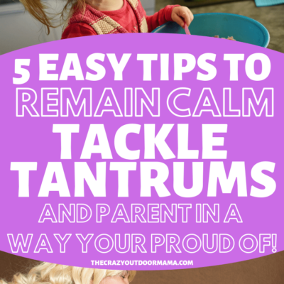 3 Year Old Tantrums, and How to Handle Them Like a Pro with Gentle Parenting (So you don't feel guilty later!)