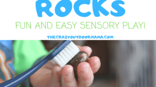 Rock Rescue Nature Sensory Bin