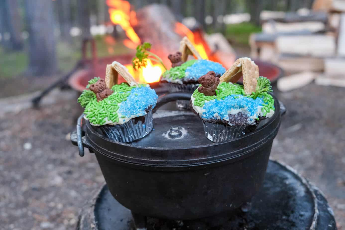 Moist And Decadent Dutch Oven Chocolate Cupcakes Baked At Camp The Crazy Outdoor Mama