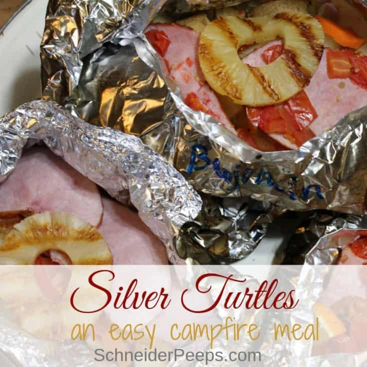 Silver Turtles (Meat, fruits and veggies!)