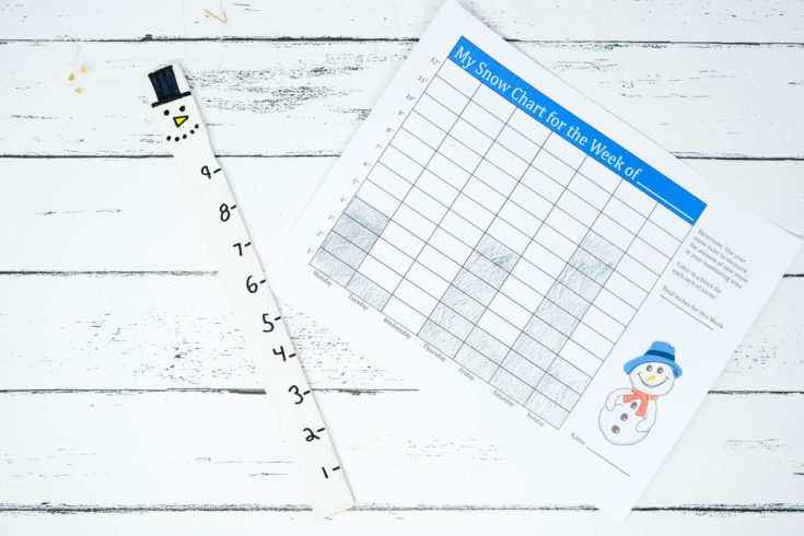 DIY Snow Measuring Stick + Printable For Kids