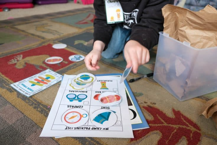 Camp Themed Sensory and Printable Match Game
