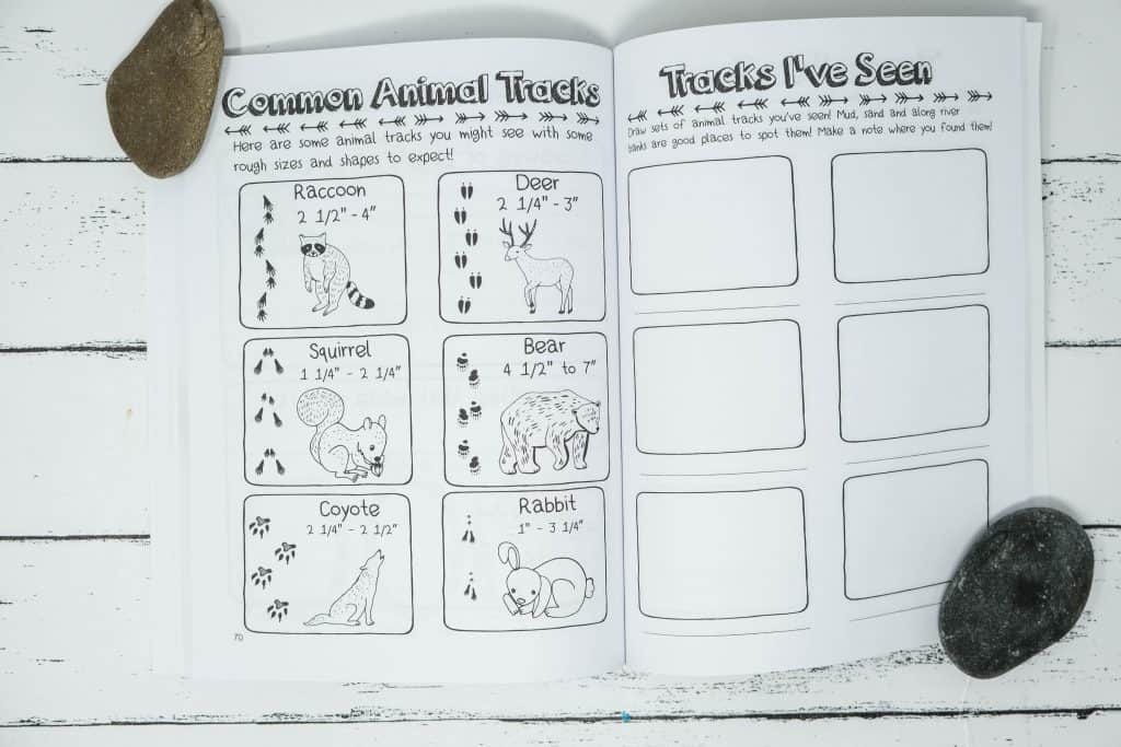 animal track sketch chart for kids in camp journal