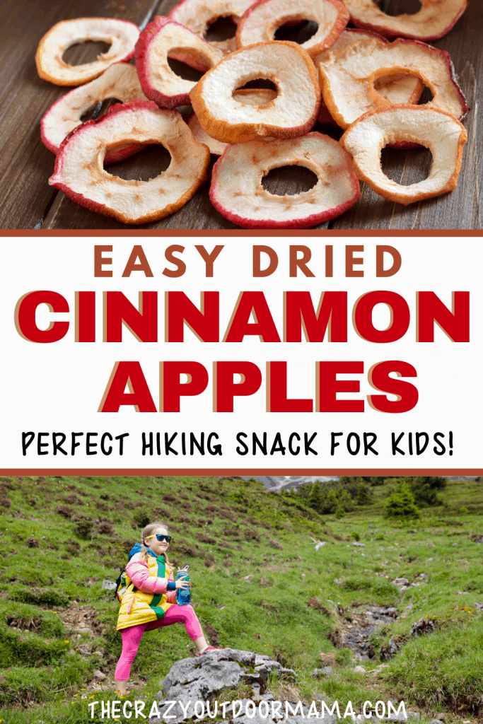 easy dried cinnamon apples for hiking or camping with kids