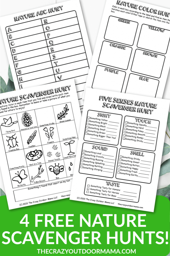 NATURE SCAVENGER HUNTS FREE PRINTABLE