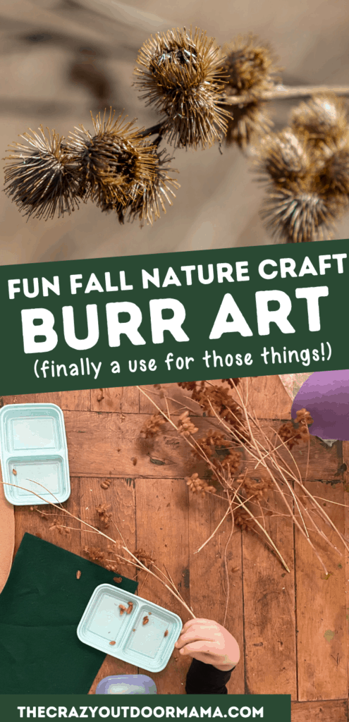 cheap fall nature craft with burrs