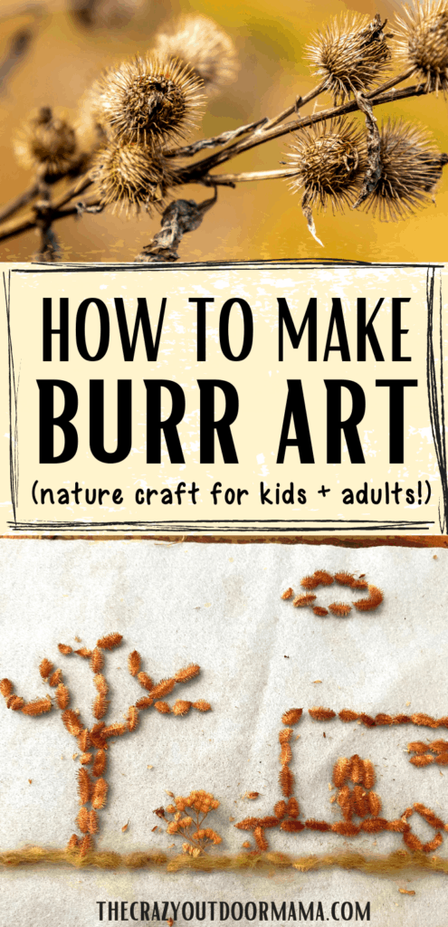 burr craft ideas for fall spikey seeds