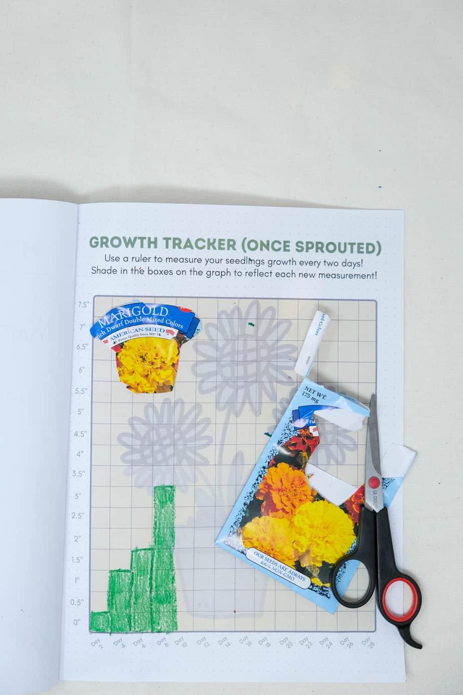 printable plant tracking journal for kids