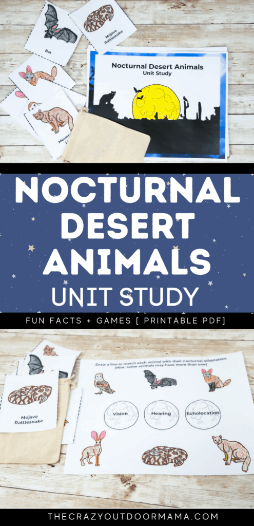 fun nocturnal desert animal activity pack with matching and fun facts for kids