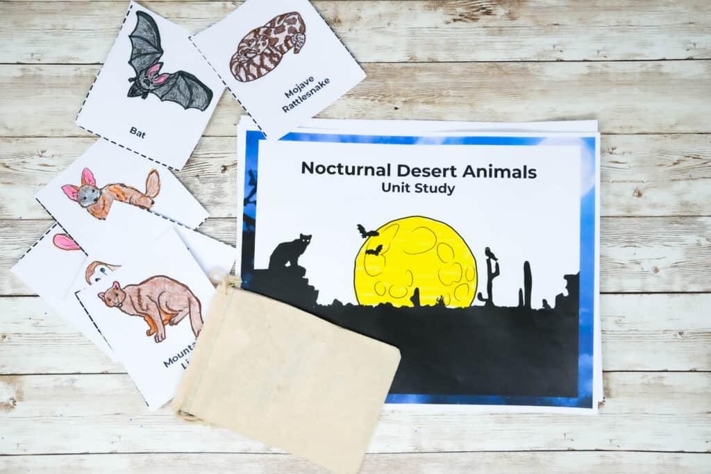 night time desert animals unit study
