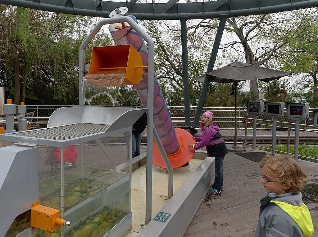 dallas arboretum learning activities