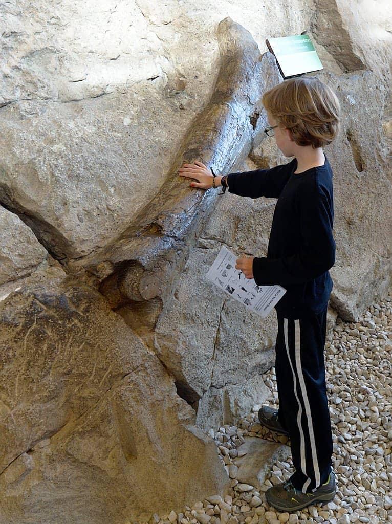 dinosaur national monument educational roadschooling ideas