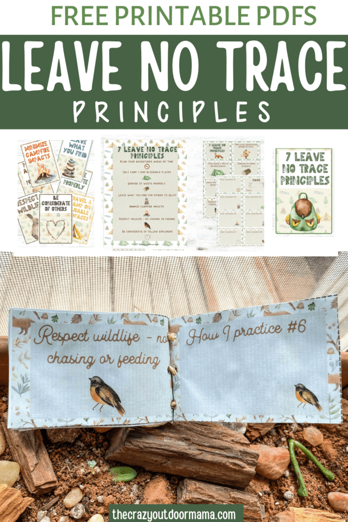 free printable to learn about 7 principle of leave no trace for camp week