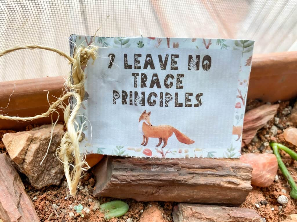 leave no trace printable for kids mini journal