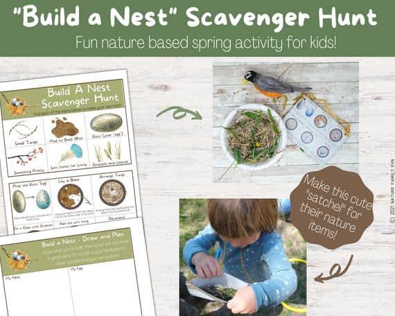 american robin nest scavenger hunt activity