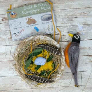 nest craft and printable for spring with kids