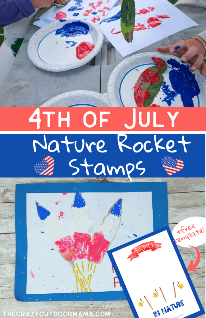 nature 4th of july craft