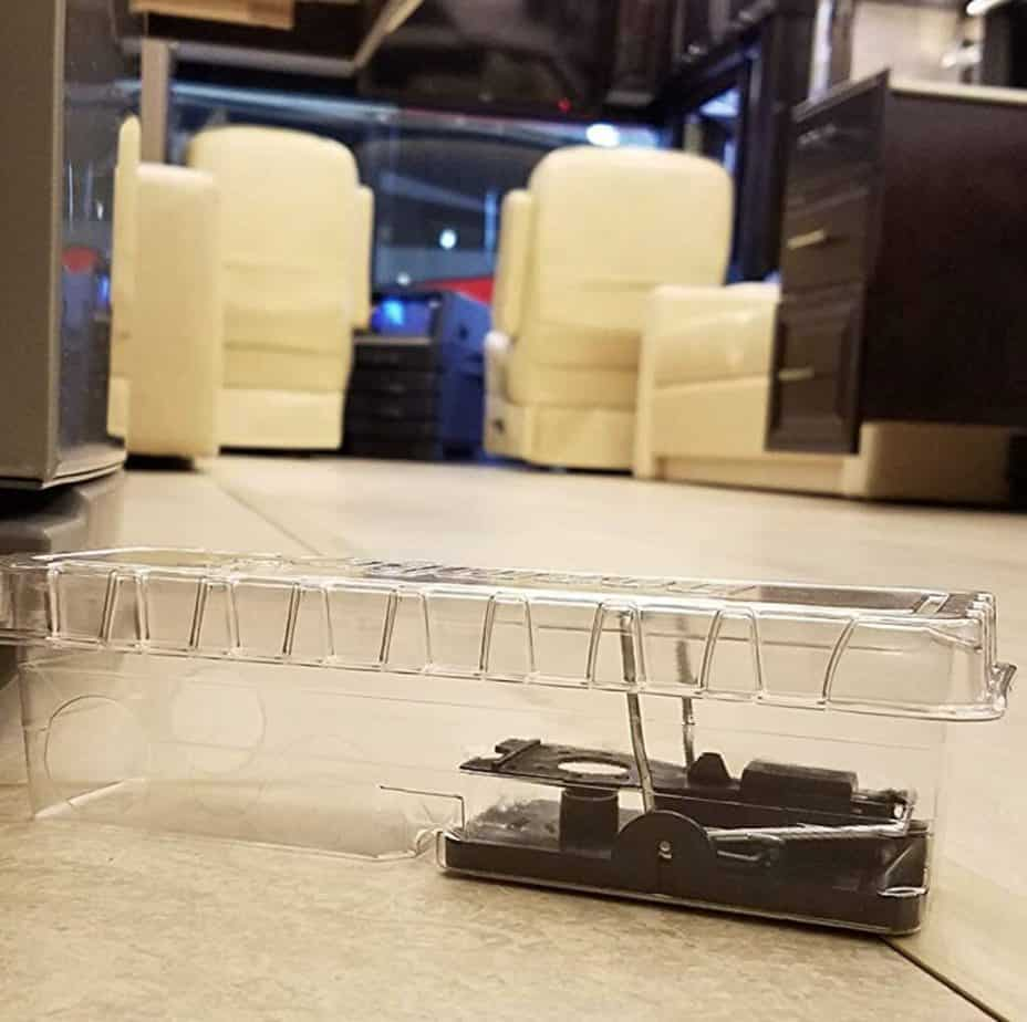mouse traps to use in rv