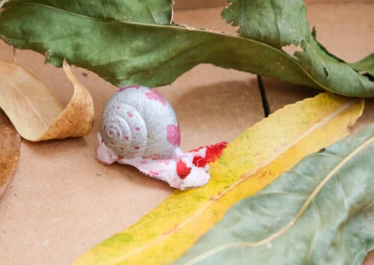 diy snail shell pet craft for kids