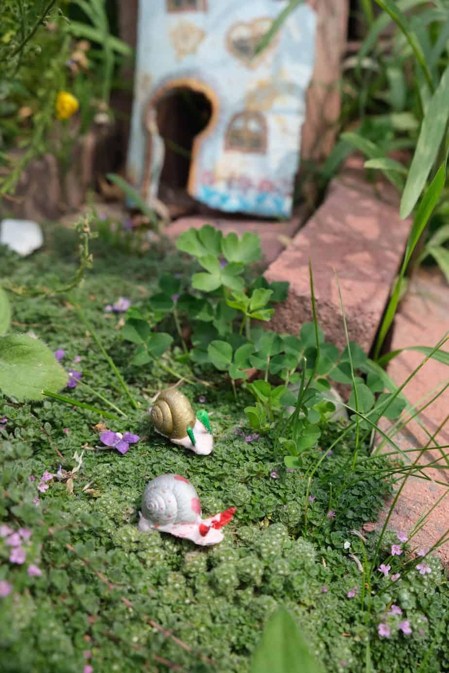 snail shell craft pet snail diy